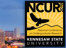 CIB analysts present research at NCUR conference in Georgia